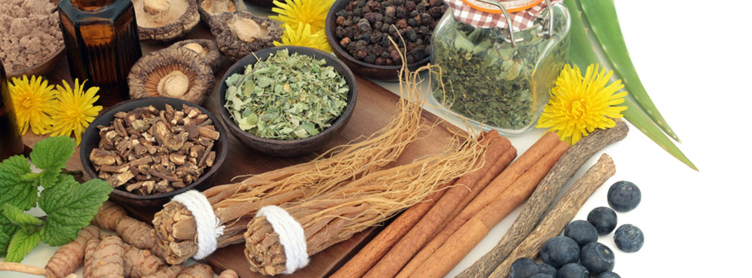 ayurvedic herbs and supplements online at ASHAexperience