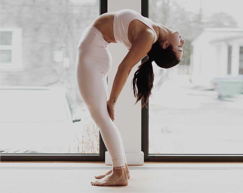 learn yoga and meditation at ASHAexperience online